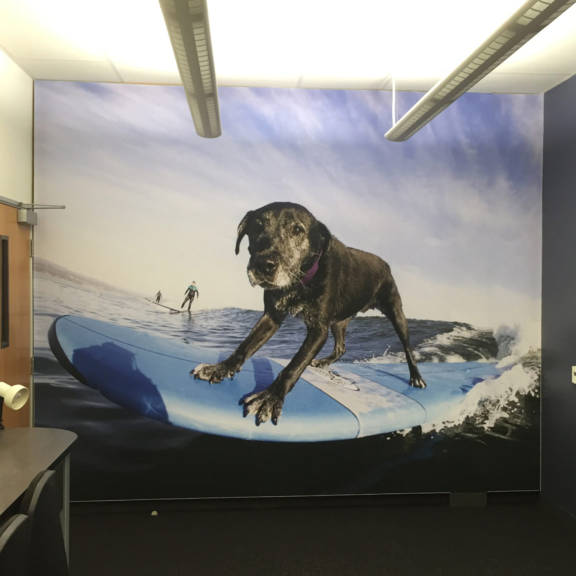 wall graphics dog surfing